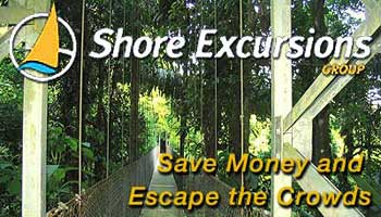 Taking A Cruise, Check out these Shore Excursions